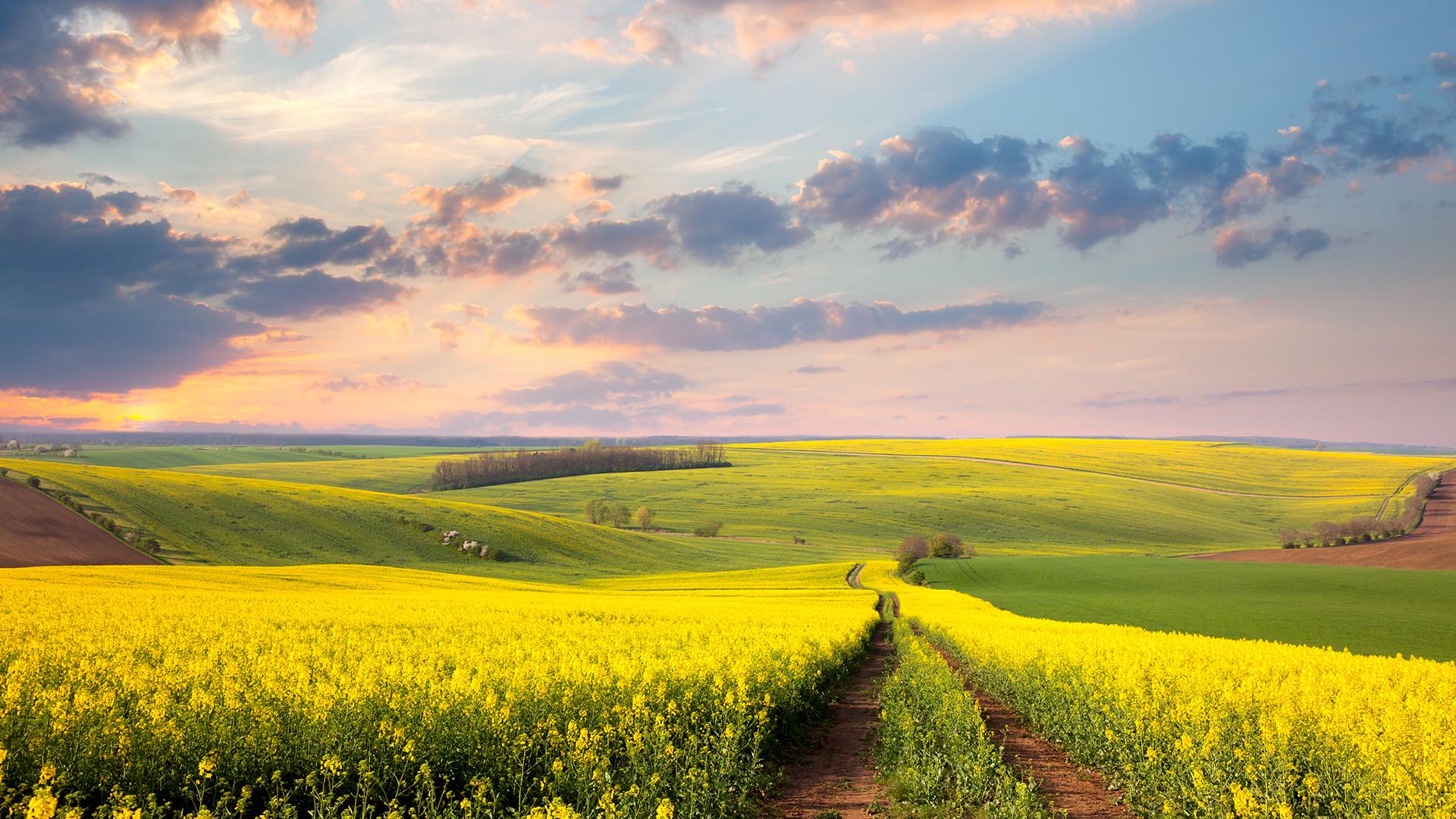 AgroTour Slavonija