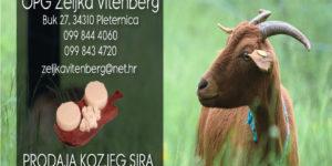 Vitenberg koze-