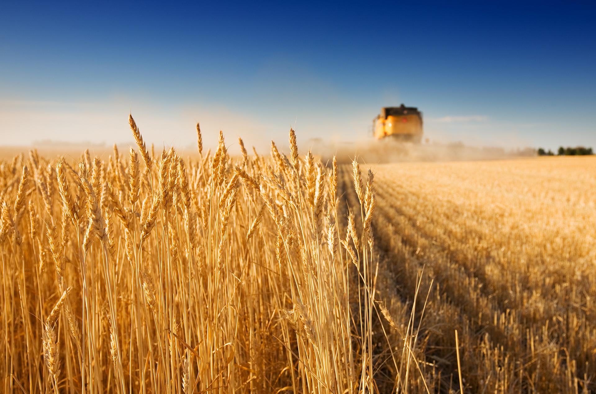 Poljoprivredne emisije kao najbolji put do ciljane publike