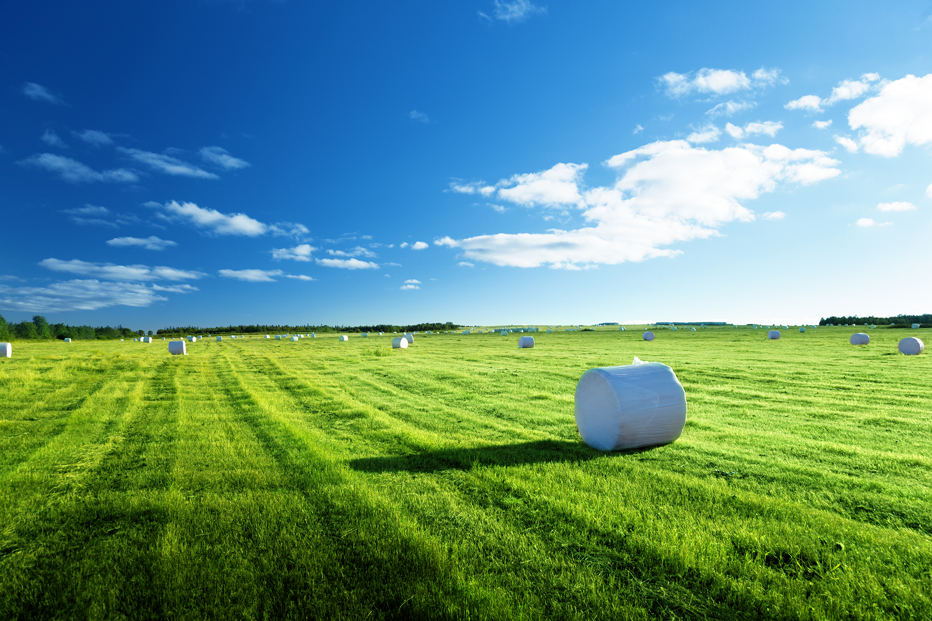 Specijaliziranim emisijama želimo doprinijeti razvoju ruralne Hrvatske