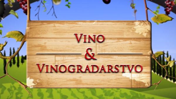 Vino i vinogradarstvo