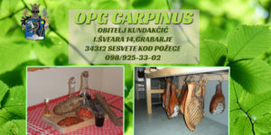 carpinus