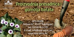 perec new (1)